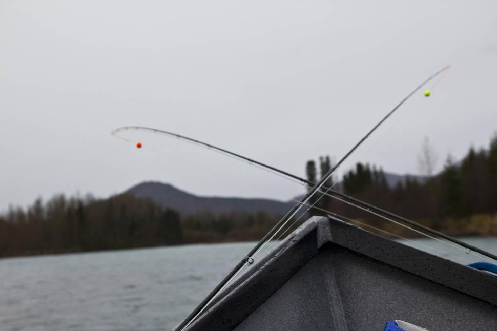Rainbow Trout Fishing in Alaska - Best Season