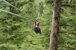 Rainforest Ziplining
