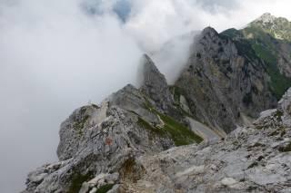 Tyrolean Climbing Gardens