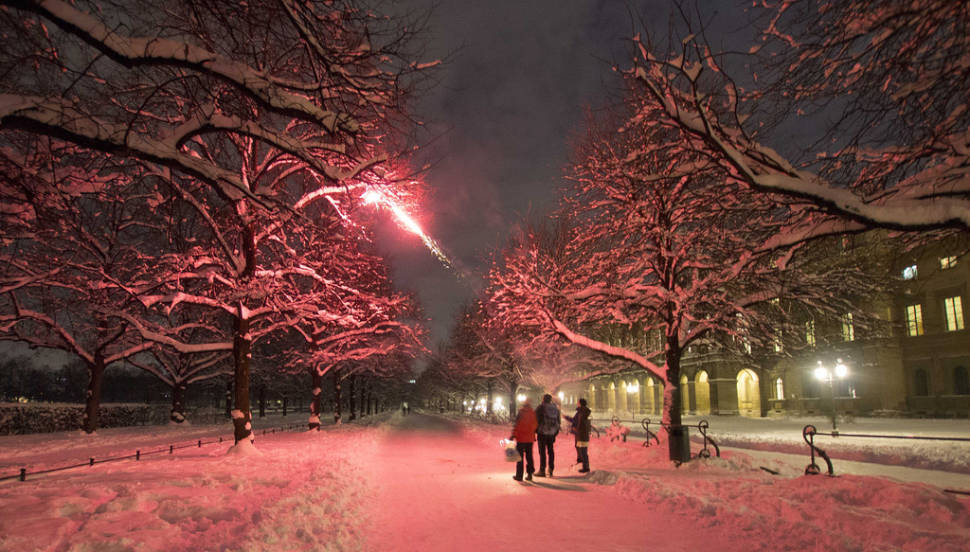 Christmas & New Year's Eve Shooting in Bavaria - Best Season