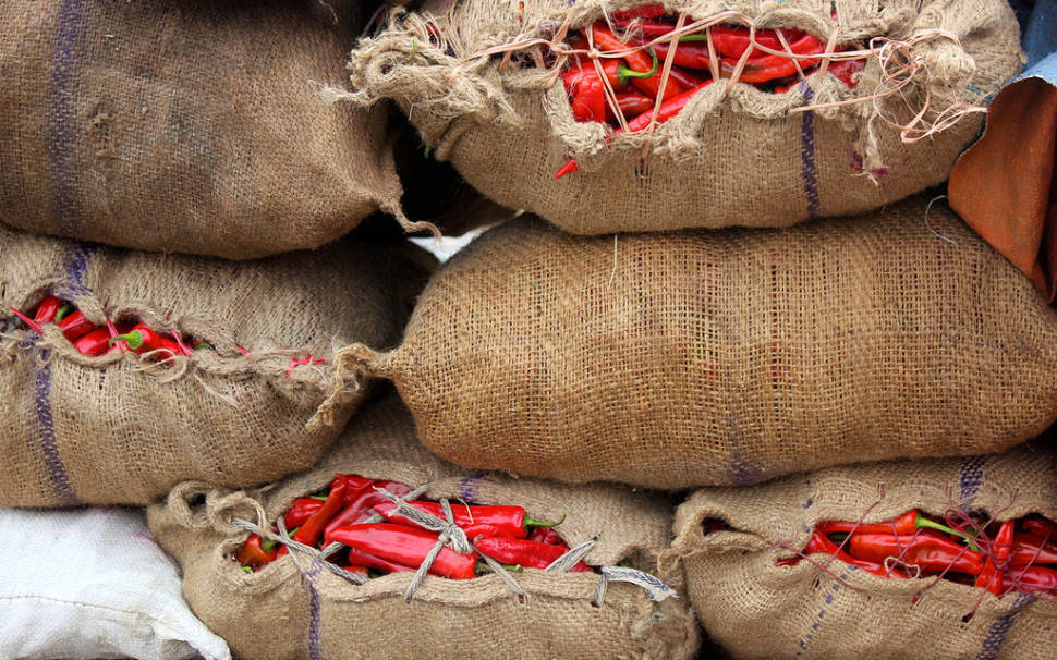 Red Chilli Peppers Season in Bhutan - Best Time