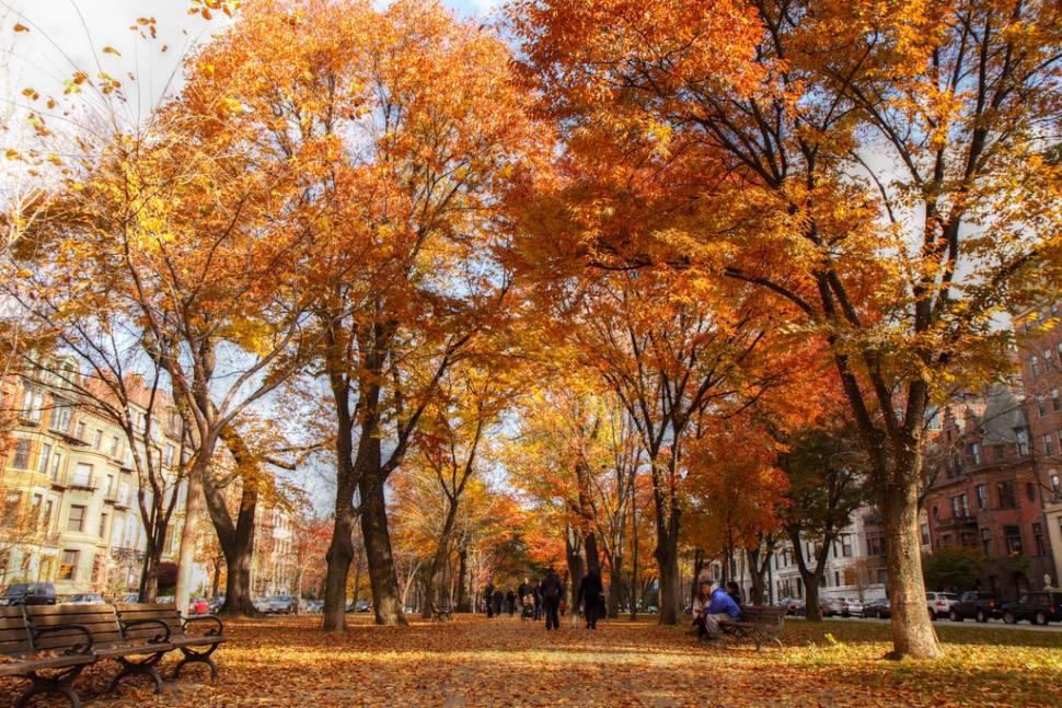 Autumn in Boston - Best Time