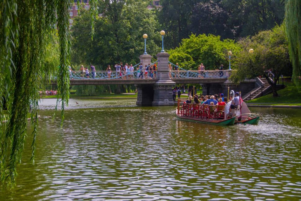 Swan Boats in Boston - Best Season