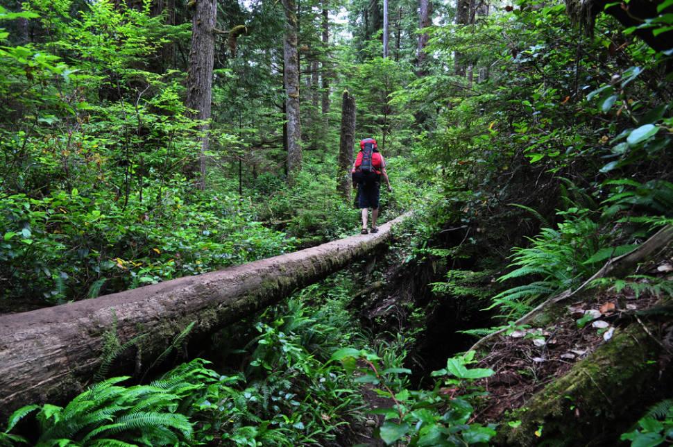 West Coast Trail in British Columbia - Best Season
