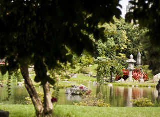 Parks in Summer