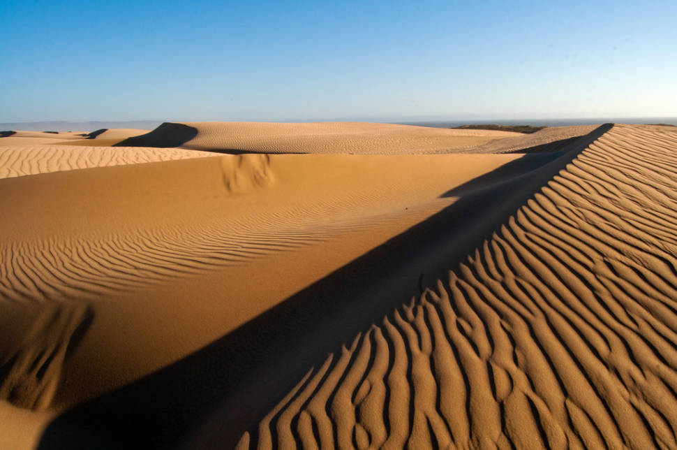 Best time for Guadalupe-Nipomo Dunes in California