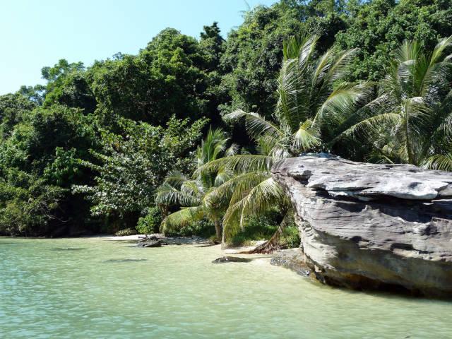 Explore Wildlife in the Ream National Park in Cambodia - Best Season