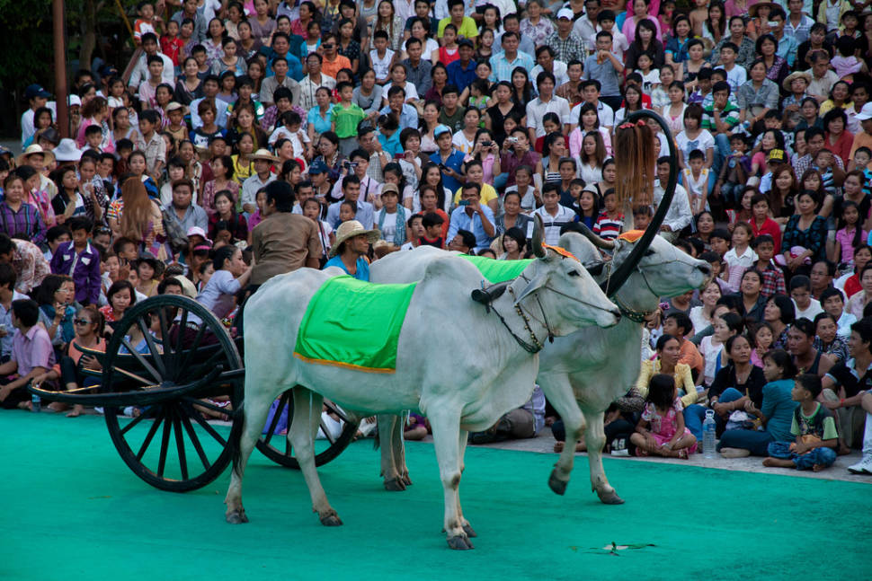 Khmer New Year's Day in Cambodia - Best Season