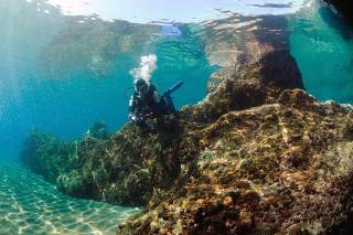 Diving and Snorkelling​