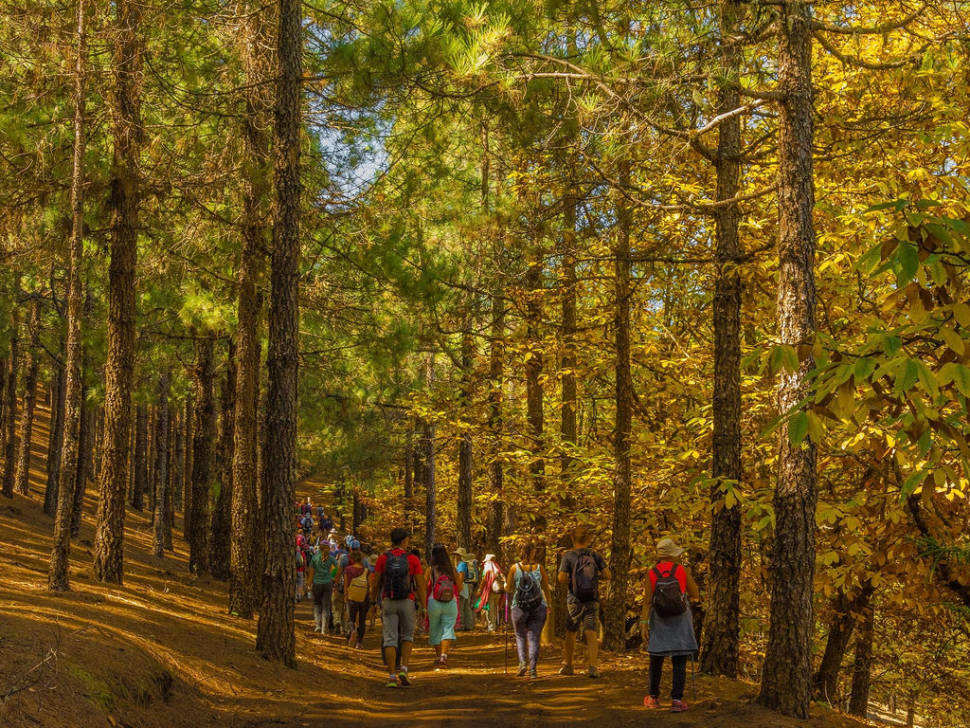 Walking Festivals in Canary Islands - Best Season