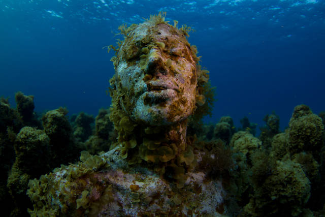 Diving and Snorkelling in Cancun - Best Season