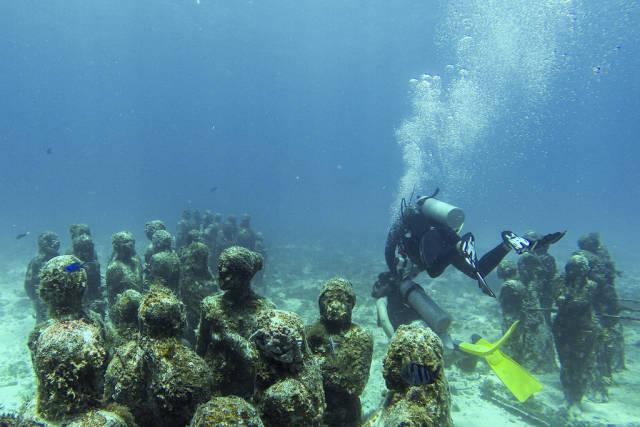 Best time for Diving and Snorkelling in Cancun