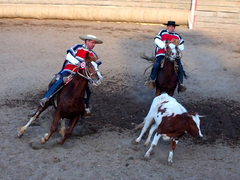 Rodeo in Chile - Best Season