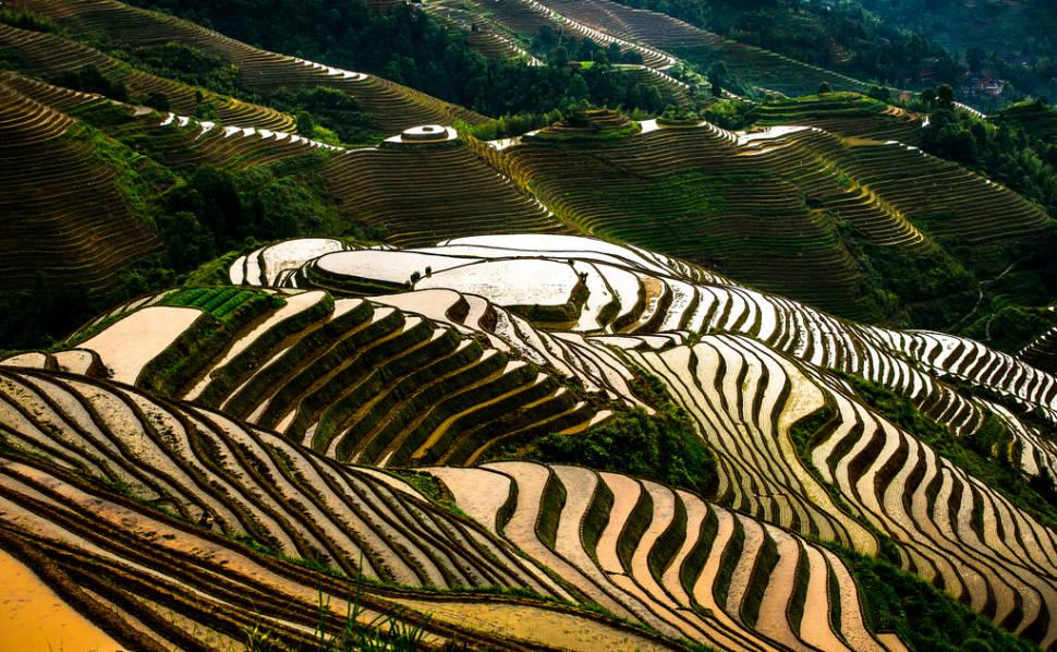 Longsheng (Longji) Rice Terraces in China - Best Time