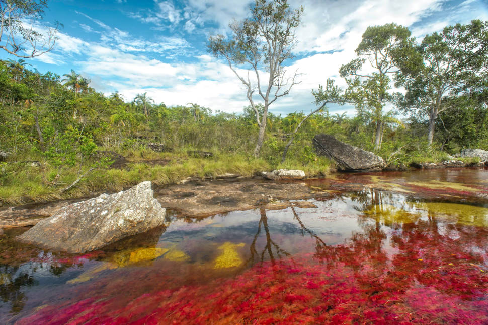 Best time for Caño Cristales River in Colombia