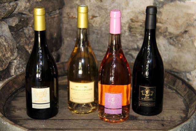 Wine Season in Corsica - Best Season