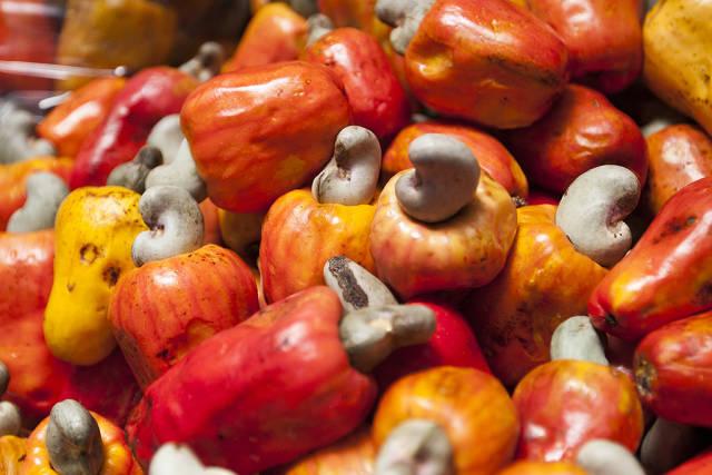 Cashew in Costa Rica - Best Time
