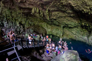 Cenote Diving, Snorkelling, and Swimming