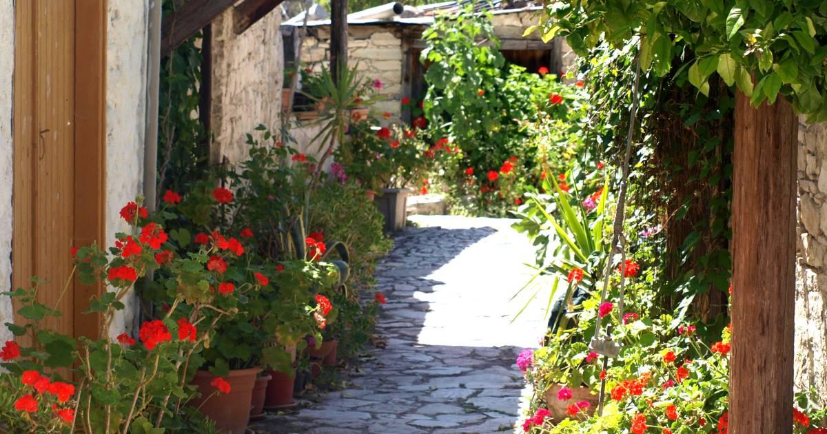 Anthestiria or Flower Festivals in Cyprus - Best Time