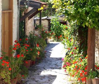 Anthestiria or Flower Festivals