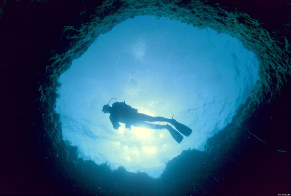 Snorkelling and Diving in Cyprus - Best Time