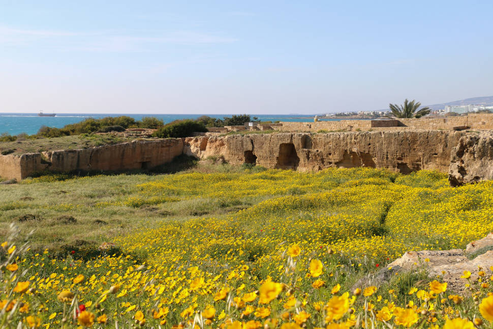 Spring in Cyprus - Best Season