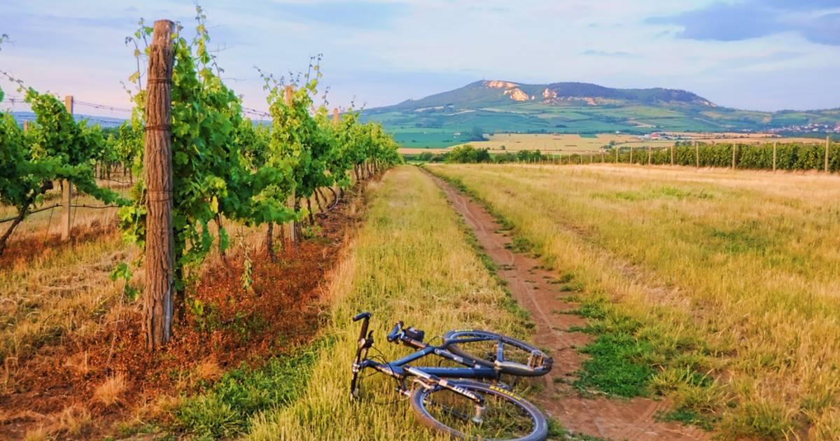 Cycling in Czech Republic - Best Time