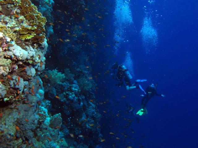 Big Brother Island, Red Sea