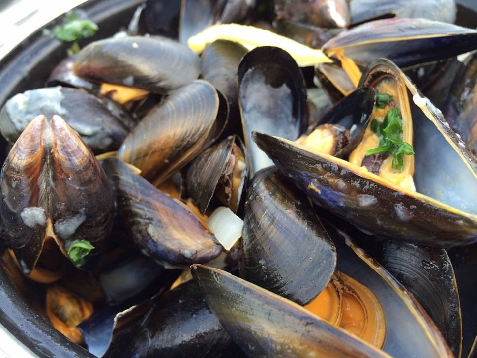 Mussels in England - Best Time