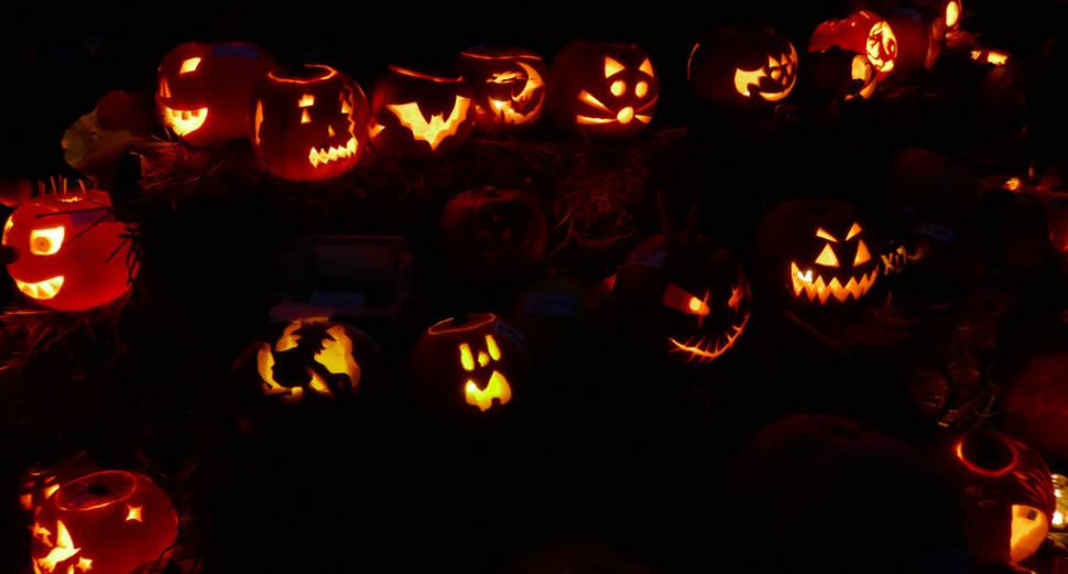 Best time for Pumpkin Season in England