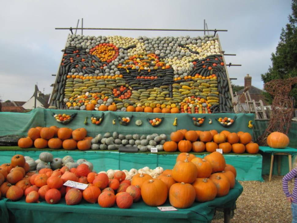 Pumpkin Season in England - Best Season