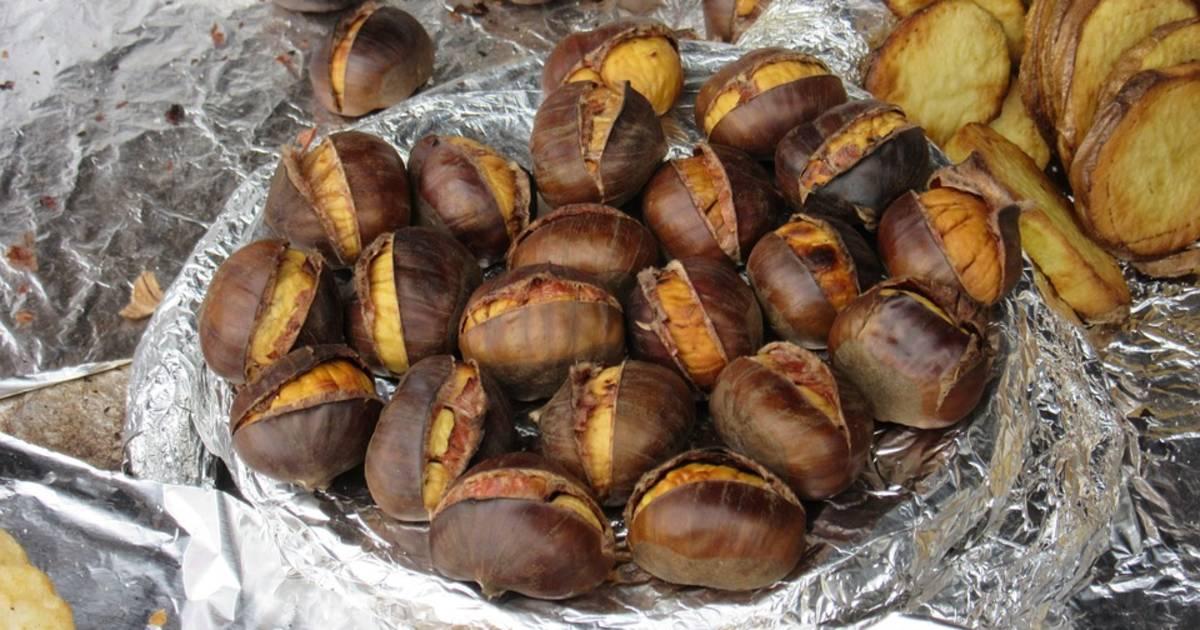 Sweet Chestnut Season in England - Best Time