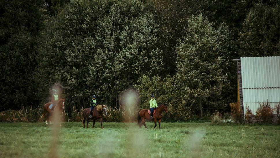 Horseback Riding in Estonia - Best Season