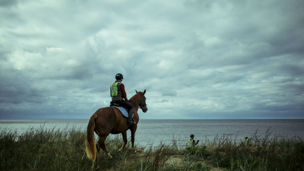 Horseback Riding in Estonia - Best Time