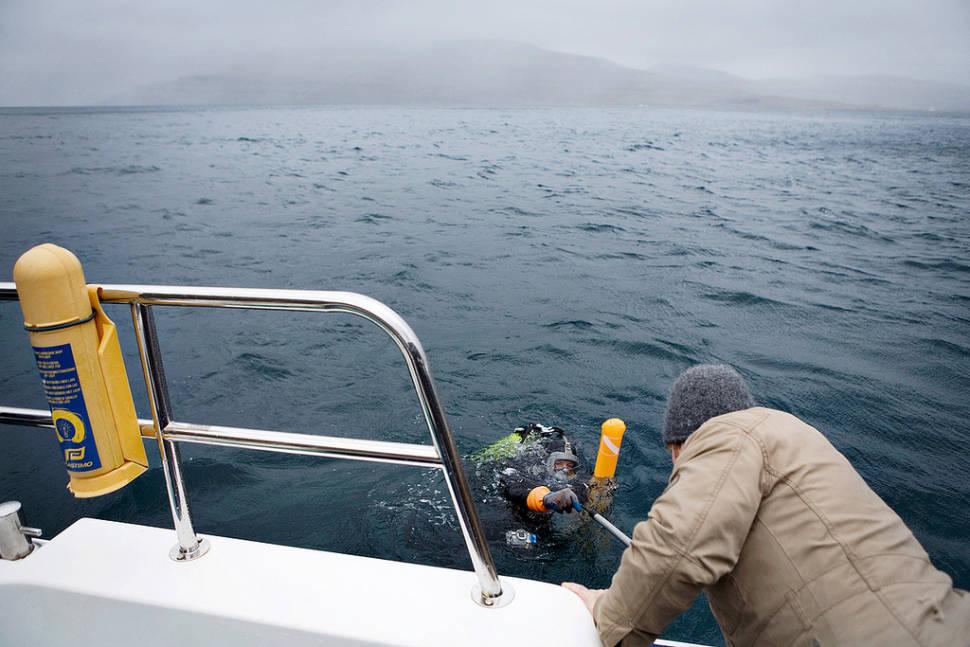 Diving in Faroe Islands - Best Time