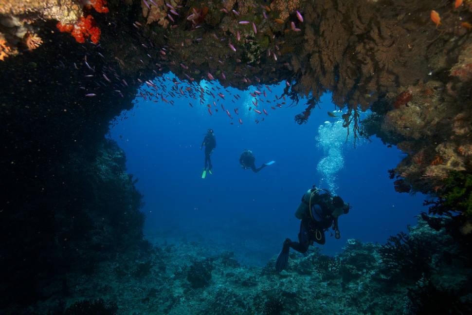 Scuba Diving  in Fiji - Best Time
