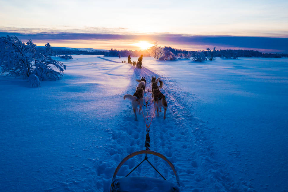 Best time for Dog Sledding in Finland