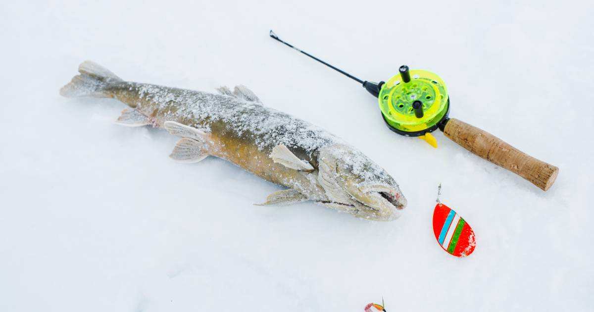 Ice Fishing in Finland - Best Time