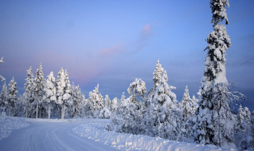 Kaamos in Finnish Lappland