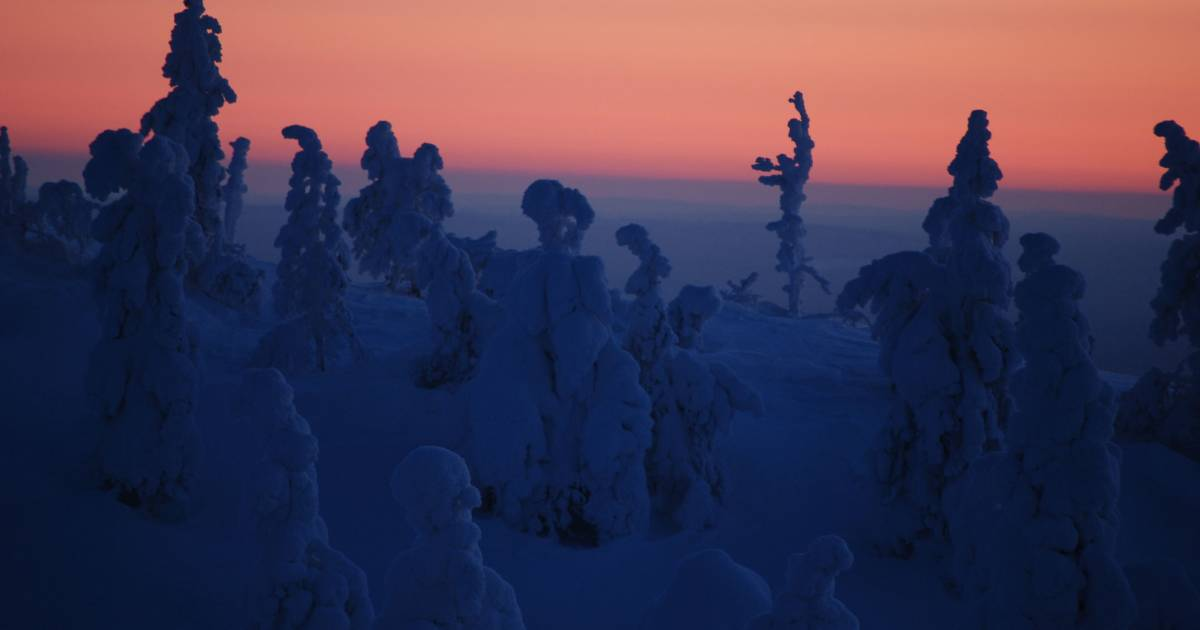 Kaamos: the Polar Night in Finland - Best Time