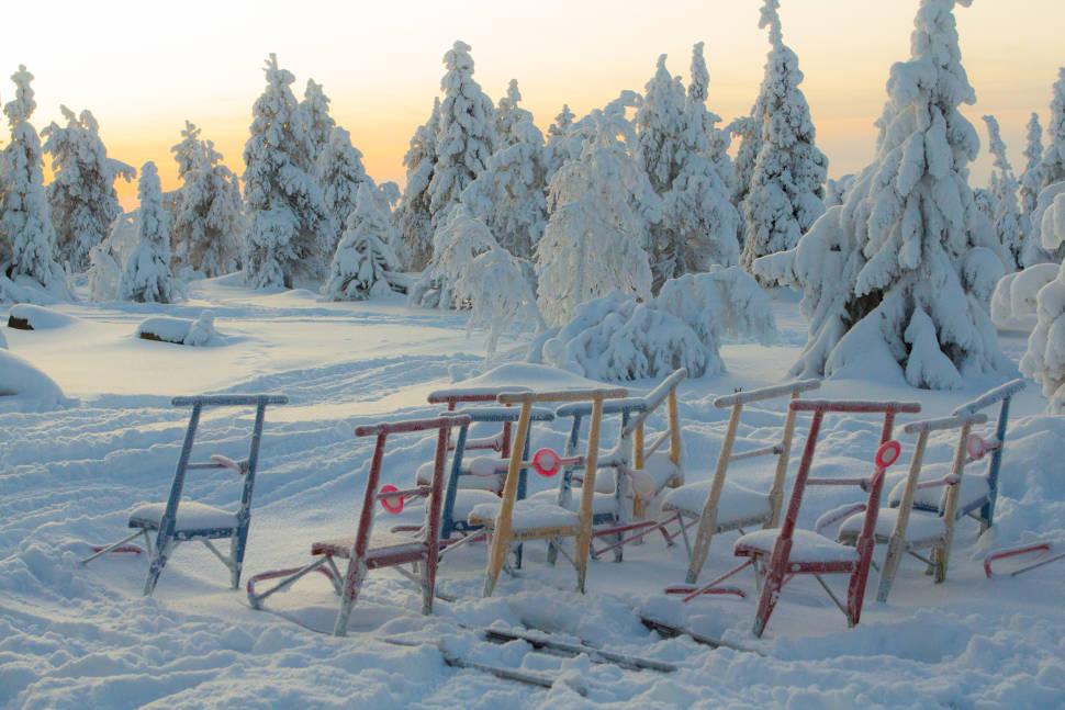 Kicksledding in Finland - Best Season