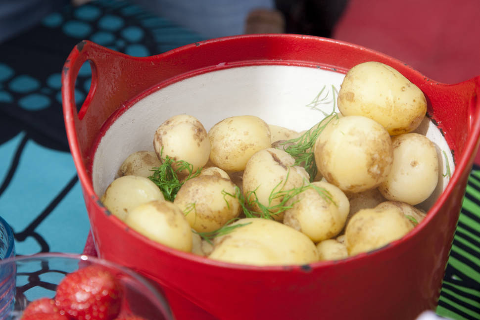 Best time for New Potato Obsession in Finland