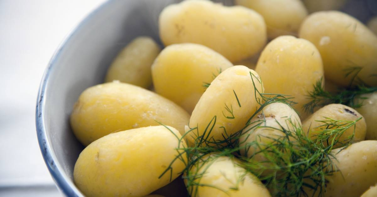 New Potato Obsession in Finland - Best Time