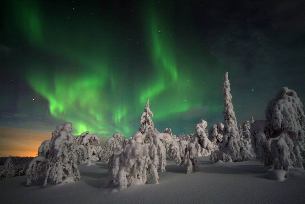 Best time for Tykky in Riisitunturi National Park in Finland