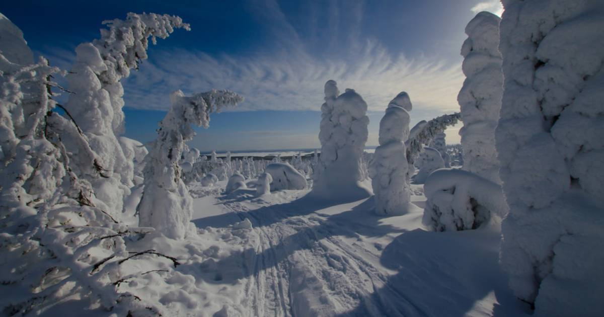 Tykky in Riisitunturi National Park in Finland - Best Time