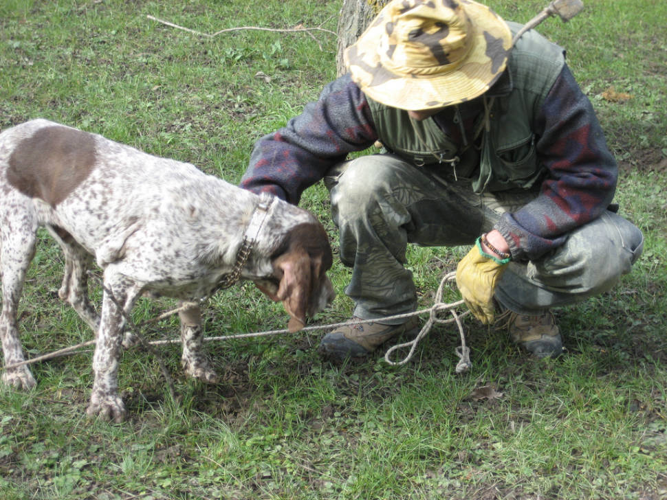 Truffle Hunting in Florence - Best Season
