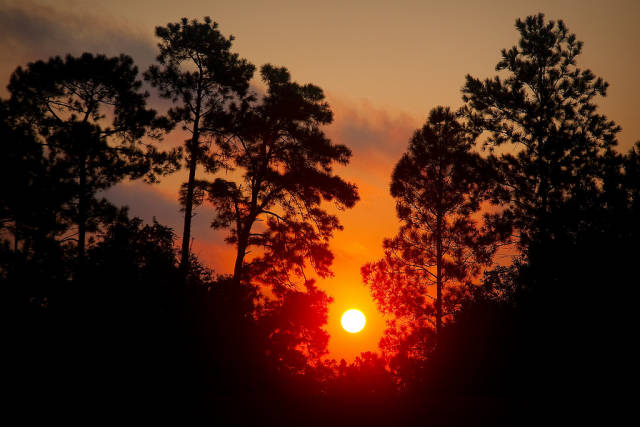 Sunrise at Disney's Old Key West