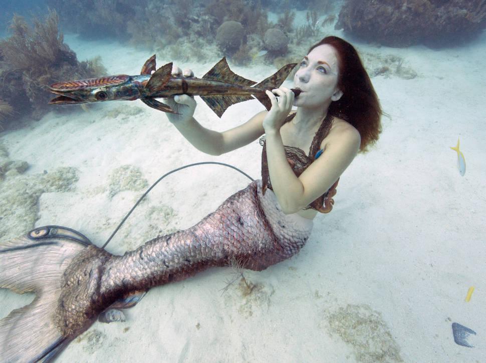 Underwater Music Festival in Florida - Best Time