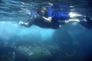 Swimming and Snorkelling Season