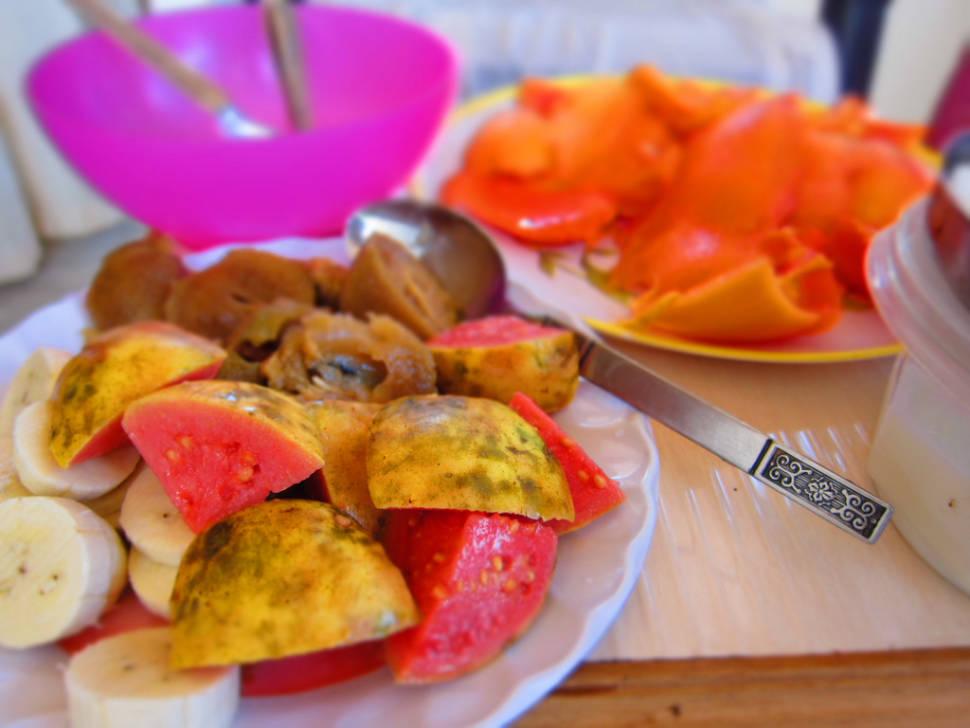 Guava in Goa - Best Season